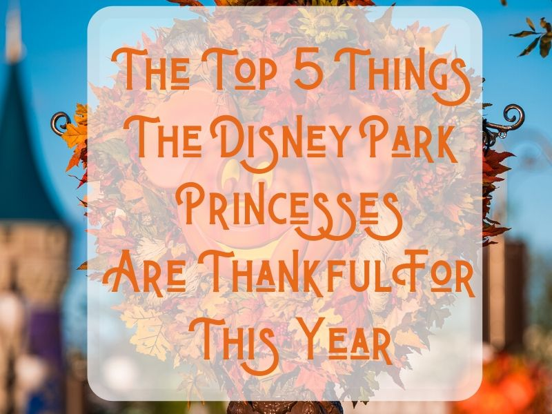 Thankful Disney Park Princess