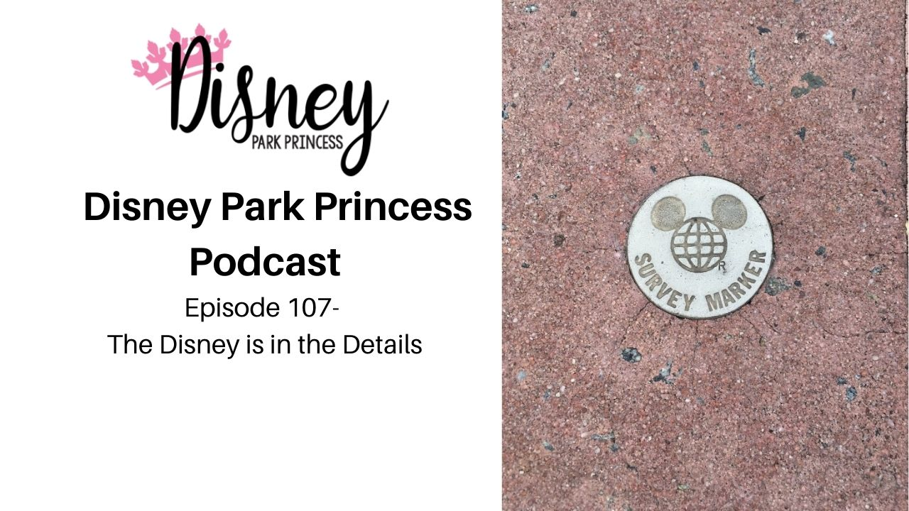 Episode 107- The Disney is in the Details