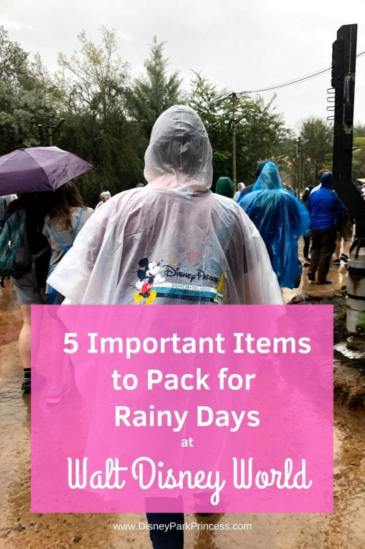 5 Important Items to Pack for Rainy Days at Walt Disney World