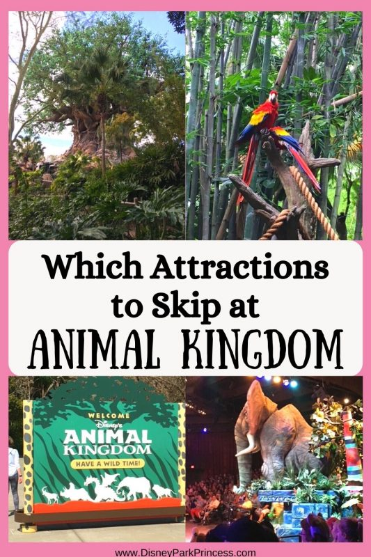 As much as I love Animal Kingdom, not every ride is a must-do! Learn which attractions I skip at Animal Kingdom in Walt Disney World. Let me know if you disagree!