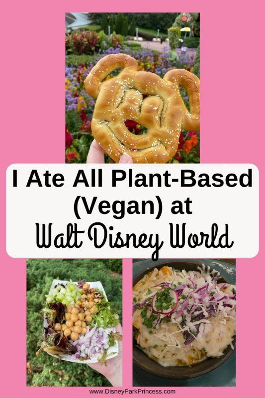 I Ate All Plant-Based (Vegan) at Walt Disney World